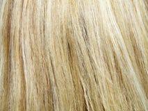 Blondes Haar an einem hellen sonnigen Tag Stockfotos