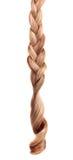 Blondes Haar geflochten im Zopf Stockfotografie