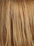 Blondes Haar, Makroschuß Stockfoto