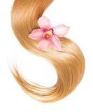 Blondes Haar mit der Blume lokalisiert auf Weiß Lizenzfreies Stockfoto