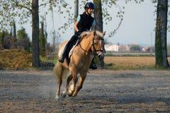 Blondes jugendlich galopp ein Pony Stockbild
