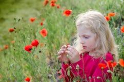 Blondes Kind mit Mohnblumenblumen Stockbilder