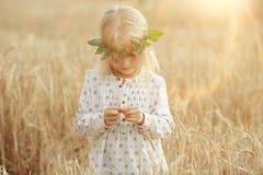 Blondes kleines Mädchen auf dem Gebiet Stockfotos