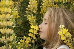 Blondes kleines Mädchen, das gelbe Wildflowers riecht stockfotografie