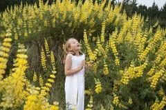 Blondes kleines Mädchen, das unter Wildflowers niest Lizenzfreies Stockfoto