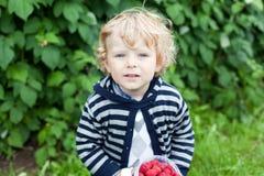 Blondes Kleinkind mit Himbeerewanne in den Händen Stockbild