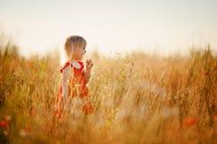 Blondes Mädchen auf dem Gebiet Stockfoto