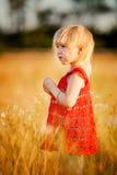 Blondes Mädchen auf dem Gebiet mit Blumen Lizenzfreie Stockbilder