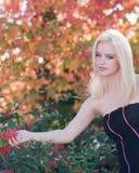 Blondes Mädchen in den Herbstfarben Stockbilder