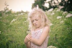 Blondes Mädchen in der Wiese Lizenzfreie Stockfotos