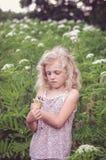 Blondes Mädchen in der Wiese Stockfotografie