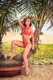 blondes Mädchen im Bikini lehnt sich auf Palme glatt macht Haar Lizenzfreie Stockfotografie