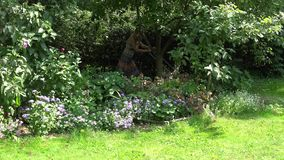 Blondes Mädchen im pickeligen Kleid mähen Rasen zwischen Gartenbäumen im Yard 4K stock footage
