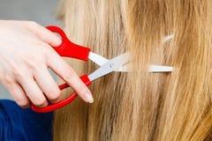 Blondes Mädchen macht neues Haarbild Lizenzfreie Stockfotos