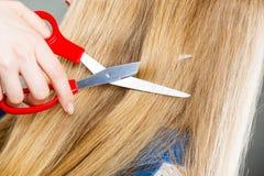 Blondes Mädchen macht neues Haarbild Lizenzfreie Stockbilder
