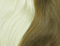 Blondes und schwarzes Haar als Beschaffenheitshintergrund Stockbild