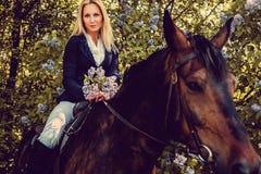 Blondes weibliches Sitzen auf Pferderückseite Lizenzfreies Stockbild