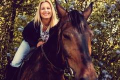 Blondes weibliches Sitzen auf Pferderückseite Stockbild