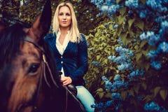 Blondes weibliches Sitzen auf Pferderückseite Stockbilder