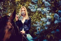 Blondes weibliches Sitzen auf Pferderückseite Stockfotos