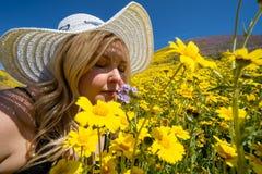 Blondevrouw die stro witte hoed draagt die een gebied van gele wildflowers ruikt Concept voor de hulp van de de lenteallergie royalty-vrije stock fotografie
