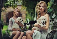Blondie sveglio due Fotografie Stock Libere da Diritti