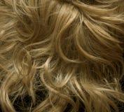 blondiewig Royaltyfri Bild