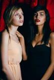 Blondine gegen Brunette, Krieg von Antipoden Lizenzfreie Stockbilder