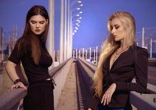 Blondine und Brunette Stockbild