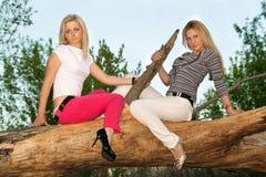 Blondine zwei, die auf einem Baumzweig sitzt Stockfotos