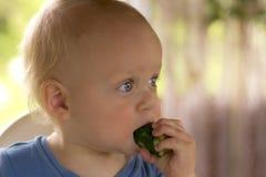 Blondy peuter die met open ogen een een komkommer en rust van Kees eten royalty-vrije stock fotografie