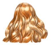 Blondy włosy ilustracja wektor