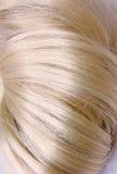 blondyn kępka Zdjęcia Royalty Free