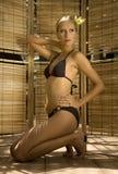 blondynka seksowna Zdjęcia Stock