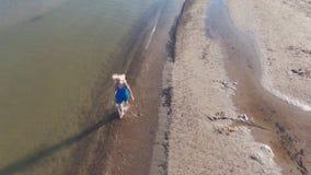 Blondynka w błękitnej sukni chodzi na wodzie na plaży morze bałtyckie, wcześnie rano s?oneczny dzie? zbiory wideo