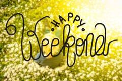 Blondynki dziecko, stokrotka kwiat, kaligrafia Szczęśliwy weekend fotografia royalty free