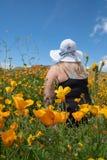 Blondynki kobieta jest ubranym czapeczka kapeluszu słomianych spojrzenia za polu makowi wildflowers podczas superbloom obraz royalty free
