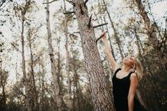 Blondynki kobiety obwieszenie od sosny gałąź w lesie Zdjęcie Royalty Free