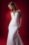 blondynki panny młodej śliczny delikatny target1740_0_ studio Obraz Royalty Free