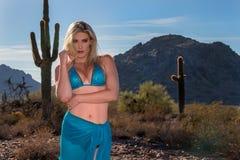 blondynki pustyni model Zdjęcia Royalty Free