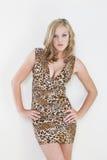 blondynki seksowny wzorcowy obrazy stock