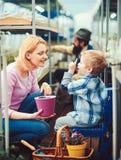 Blondyny żartują opowiadać jego mum podczas gdy wskazujący w górę Matki i syna obsiadanie między rzędami w zielonym domu z piękny zdjęcie stock