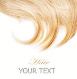 Blont hår Arkivbild