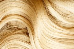 blont hår tätt hår skjuten textur upp sunt hår Den unga asiatiska flickan som kammar hår med, fingrar isolerat på vitbakgrund royaltyfria bilder