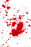 Blood. Red in splashed over white background Royalty Free Stock Image