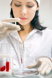 Blood analysis Stock Photos