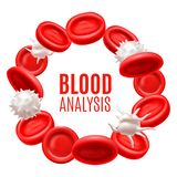 Blood Analysis Concept with Blood Cells in Realistic Style. Blood Analysis Concept. Blood Cells Template in Realistic Style for Medical Banners Ads Fliers stock illustration