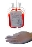 Blood bag. A bag of donor blood royalty free stock photos