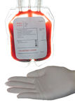 Blood bag. A bag of donor blood royalty free stock image