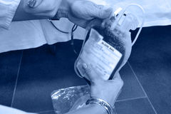 Blood bag in the hands of nurses Stock Photo